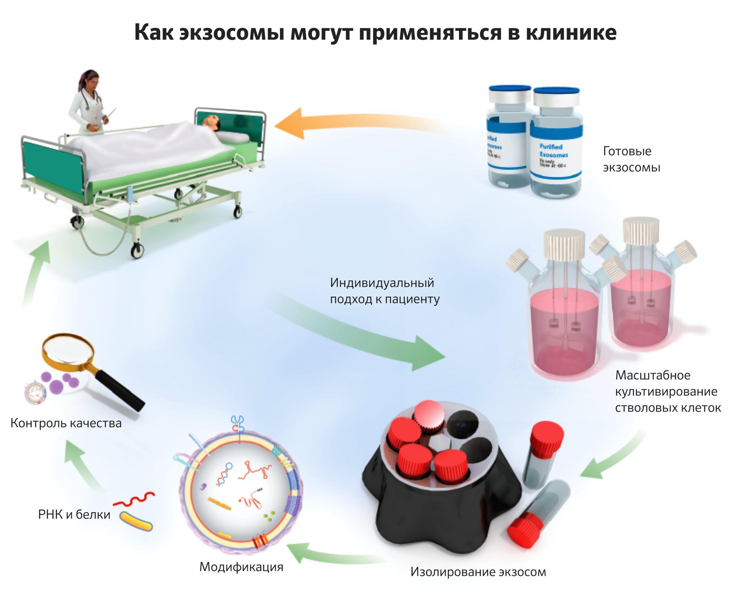 Стволовые клетки лечение простатита массажер урологический для простаты